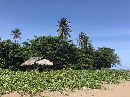 Paradiesische Ruhe am Strand